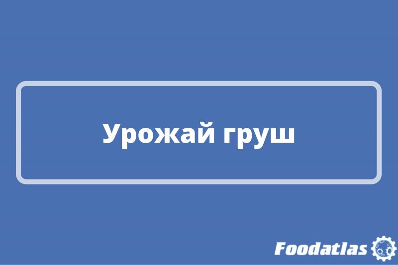 Сократится в России на 15%